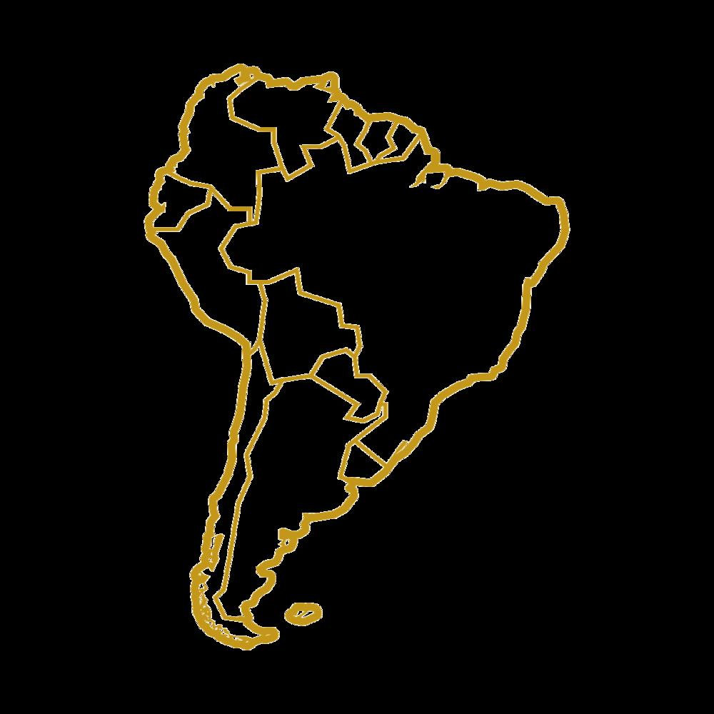 Sydamerika  - Der spises insekter flere steder i Sydamerika og det er ikke så underligt, i forhold til det naturligt høje antal af spiselige arter på kontinentet.I Venezuela spiser man f.eks.orme, biller og græshopper.I Brasilien spises myrer og voksmøllarver.