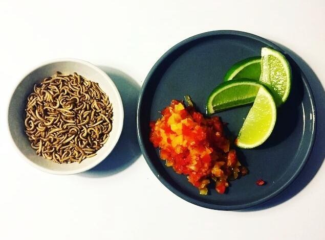 Hvordan tilberedes insekter? - At spise insekter kan udover at være en spændende kulinarisk oplevelse, også være en sjov og inkluderende begivenhed.Se herforskellige måder at bruge insekter i mad og lad dig inspirere af nemme opskrifter på retter med insekter.