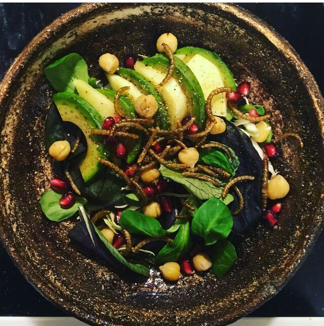 salat med melorme - spiselige insekter er sunde, bæredygtige og klimavenlige