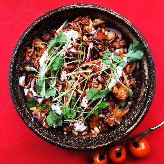 Dinner salad bowl with BBQ jack fruit and mealworms 🥙🐛💪🏼 The combination of bugs & jackfruit gives a really satisfying meaty taste and texture.  Tomatoes  Red onion  Carrot  Pine nuts  Chickpeas  Jack fruit  BBQ roasted mealworms  #INSKT #edibleinsects #sustainablefood