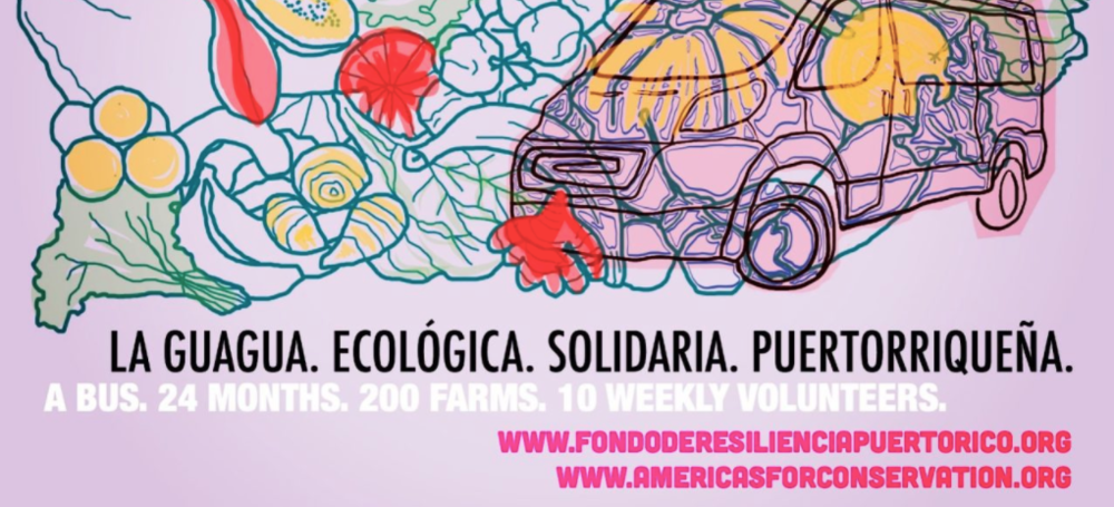 Americas for conservation + Arts - AFC+A Puerto Rico Resilience Fund