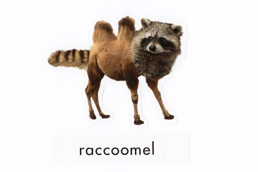 Raccoomel_Print.jpg