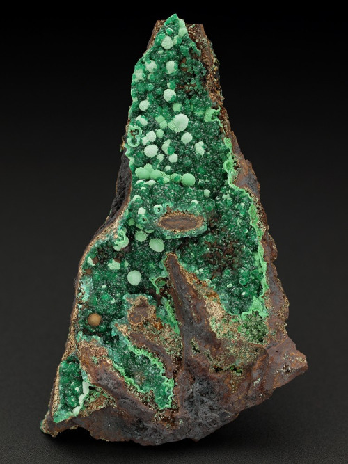 adamite and conichalcite from Mexico by  Tony Peterson