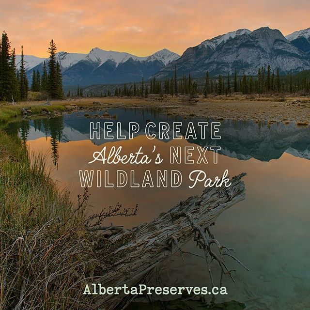Pledge to protect the #bighornbackcountry. A few seconds now can help preserve Alberta's wild beauty for generations to come. Head to albertapreserves.ca to show your support. #albertapreserves