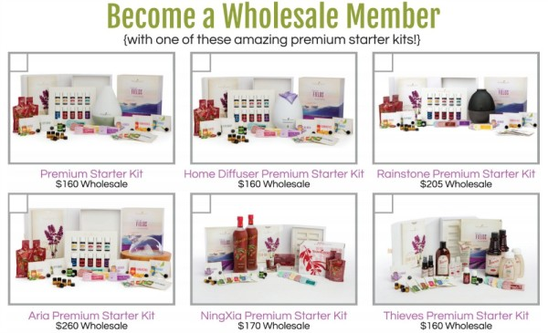 (Not shown is the Basic Starter Kit which is $45 and comes with a bottle of Stress Away and samples of other essential oils and two NingXia Red packets (no diffuser).
