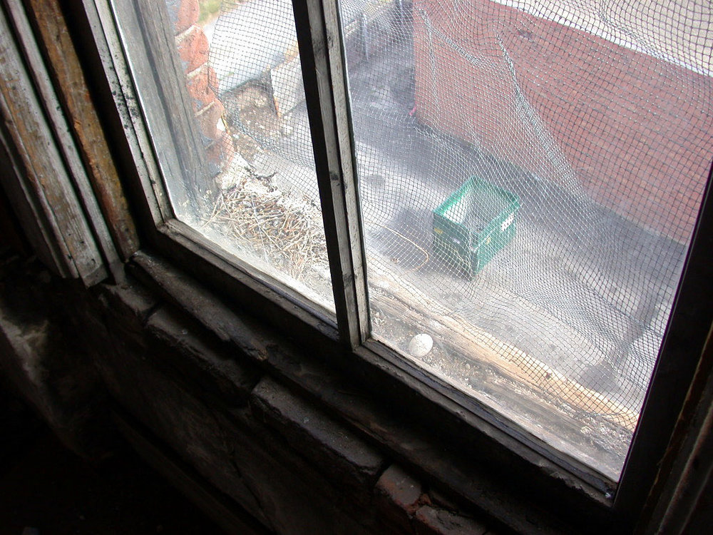 Tabor Opera House window sill deterioration 6 recent.jpg