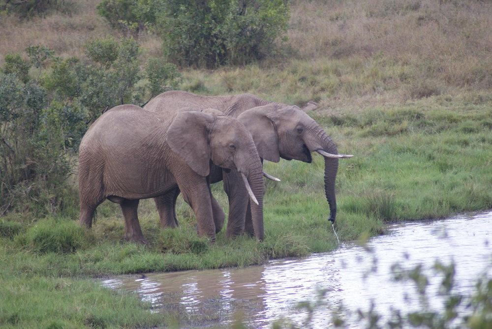 joylove-kenya2016-11.jpg