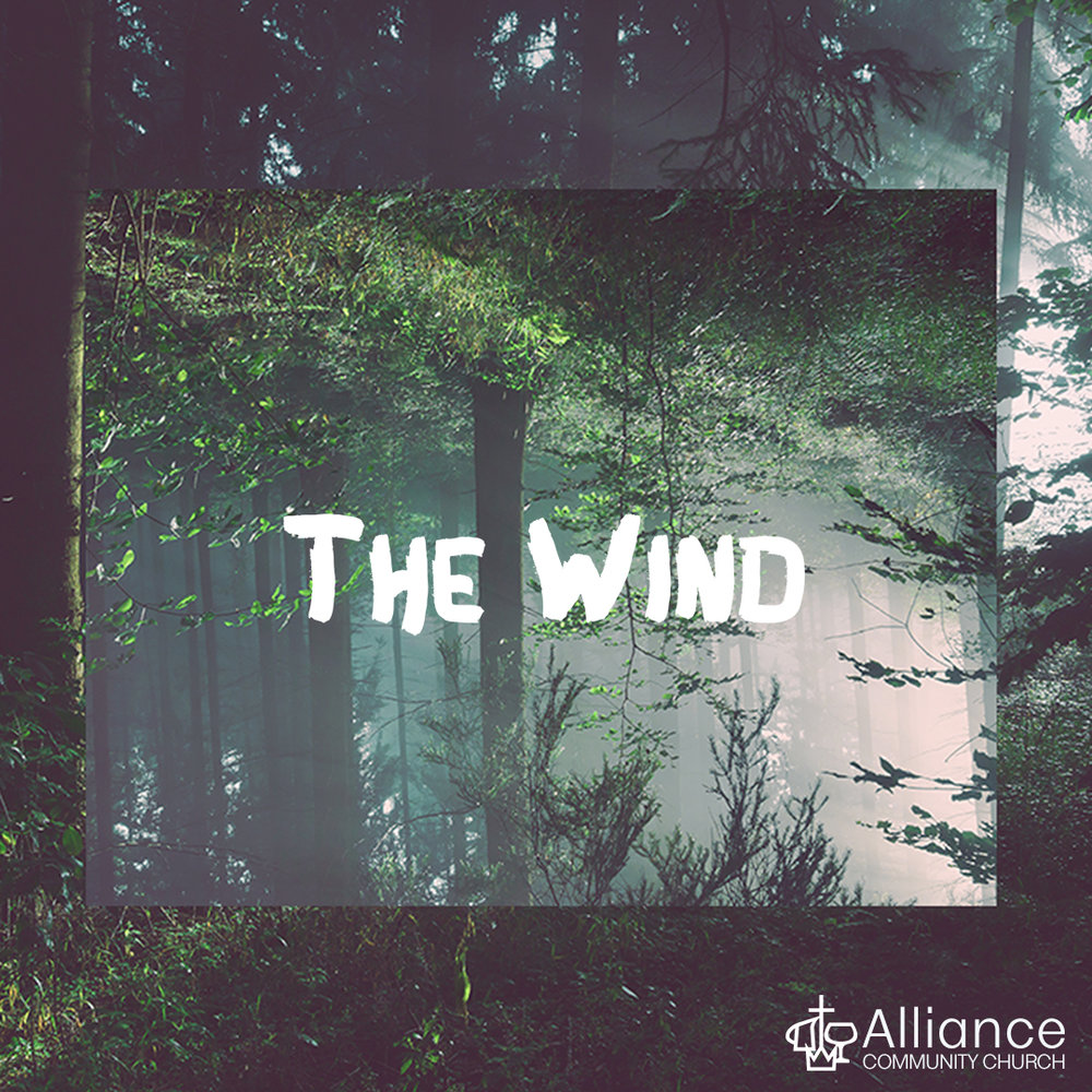 Wind Insta.jpg