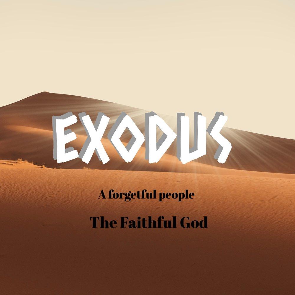 ExodusSquare.jpg