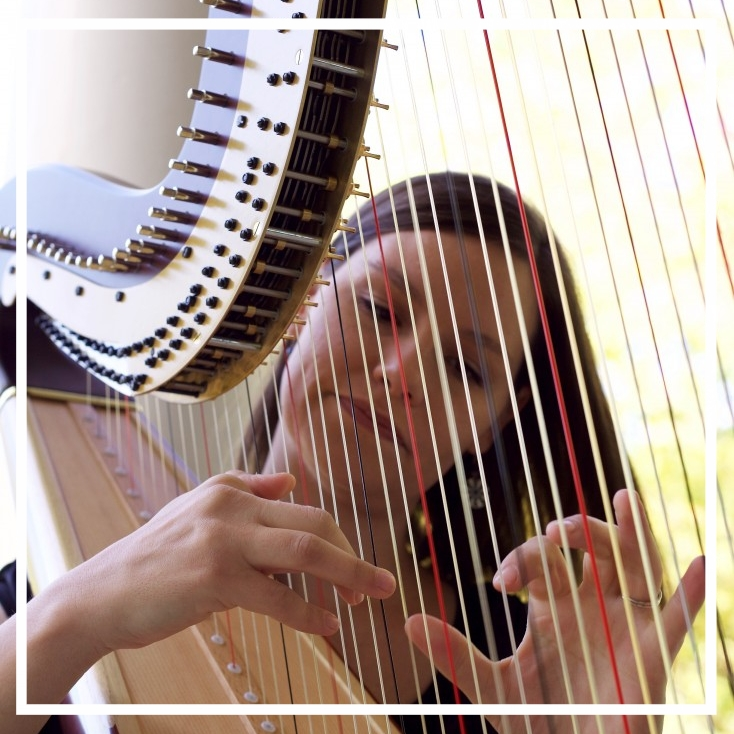 Ann Arbor-based solo harpist available for weddings and special events.