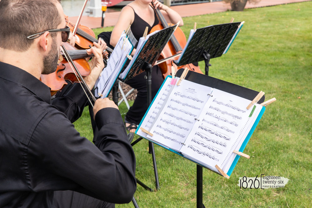 Hey Jude performed by String Quartet. Captured by Jamie with  1826 Photographic
