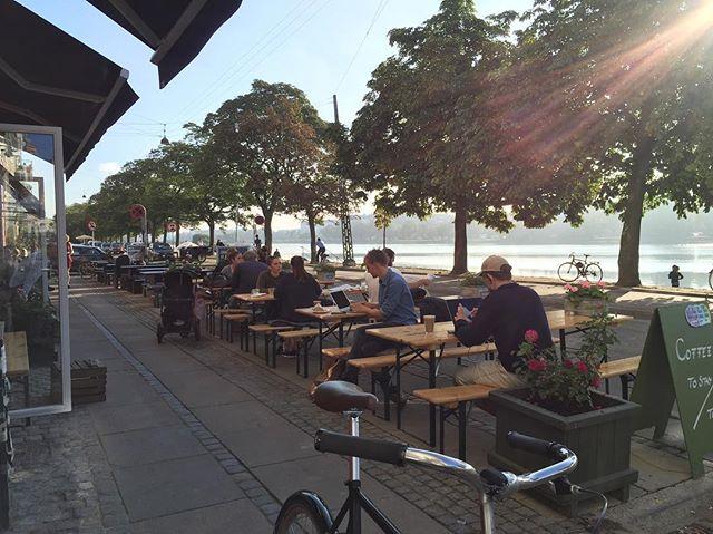 Godmorgen smukke søndag!! 🌤🌿🐾☕️ #originalcoffee #original #coffee #dosseringen #carosbiks #gåtur #søerne