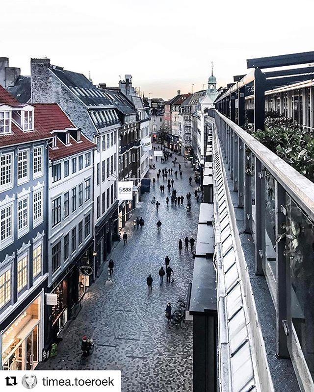 @timea.toeroek on top! 📸☕️🏙 #originalcoffee #original #oc #rooftop #strøget