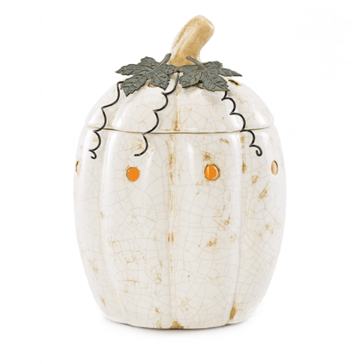 Click here to purchase this warmer!