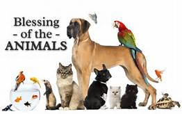 blessing of animals2.jpg