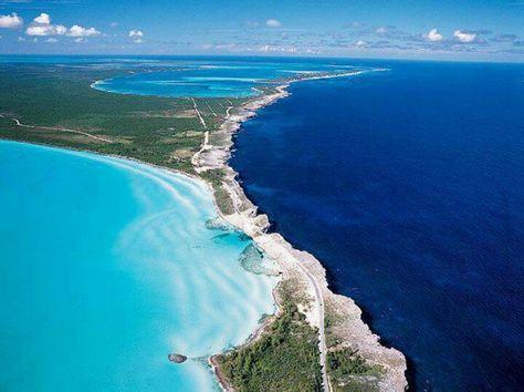 Bahamas two.jpg