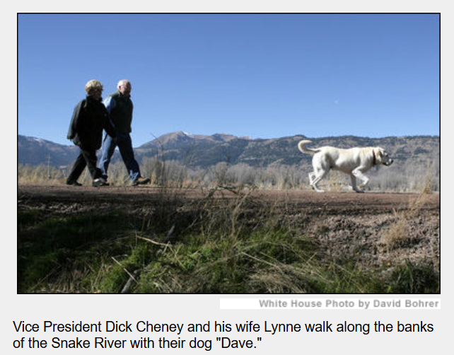 Cheney dog named Dave.png