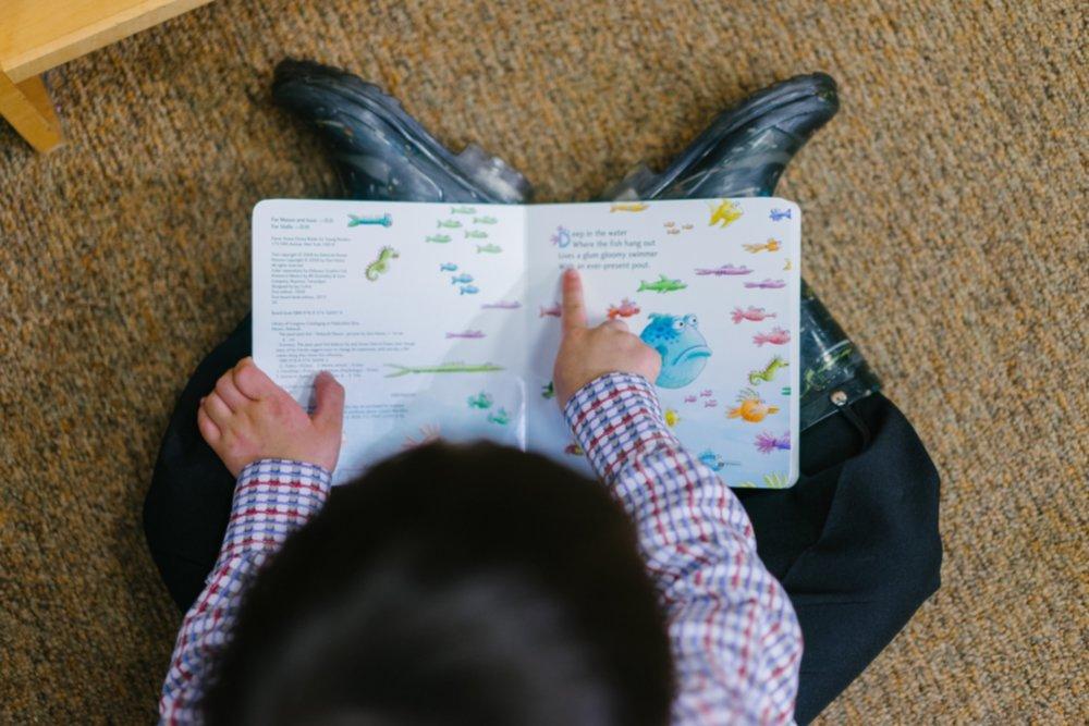 adorable-book-boy-1250722.jpg