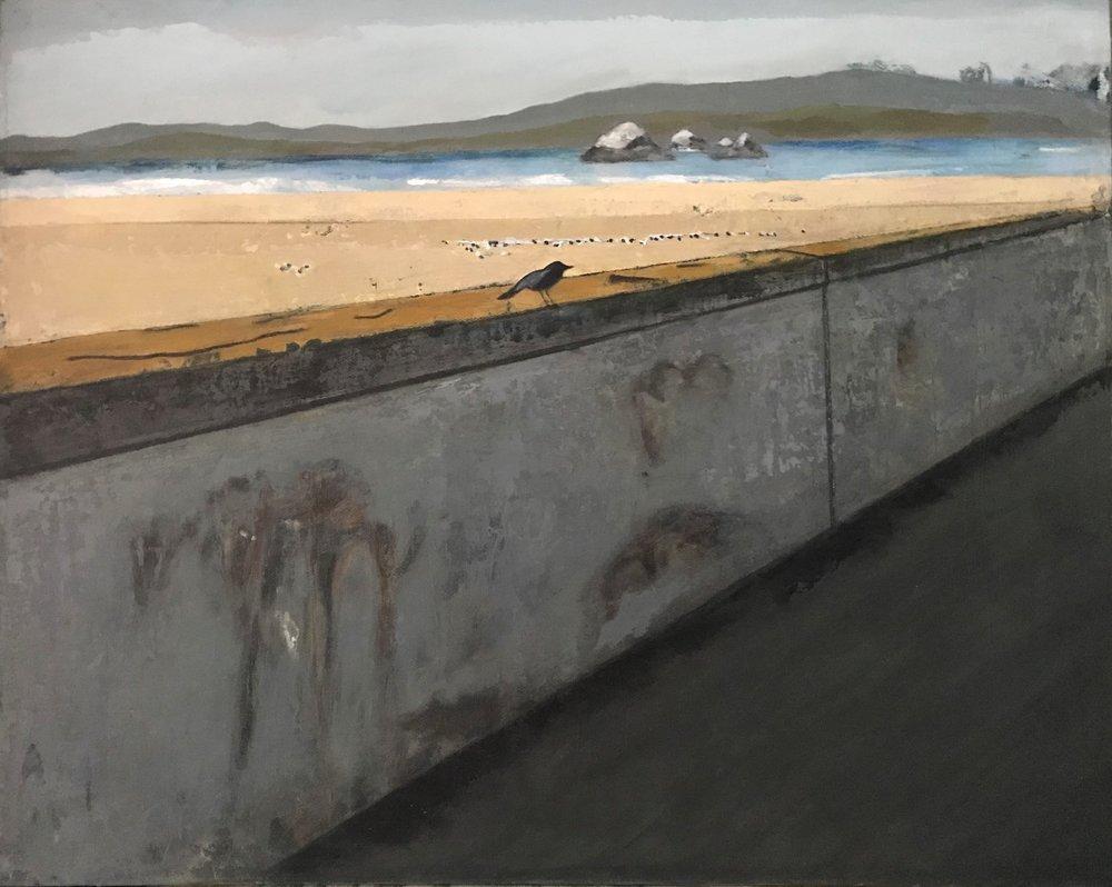 WATER | Bird at Ocean Beach | 16x20 | $670   Go to WATER gallery