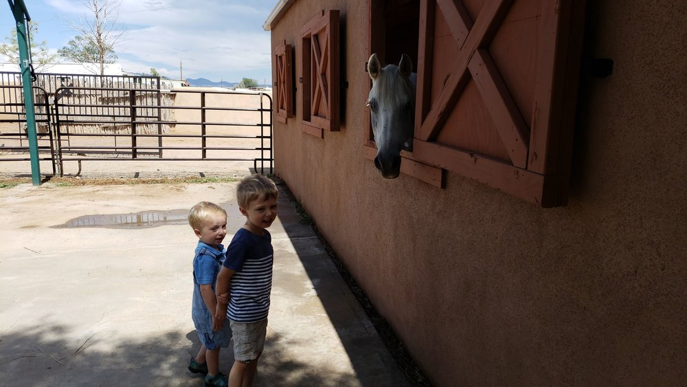 The stable was right outside our front door!