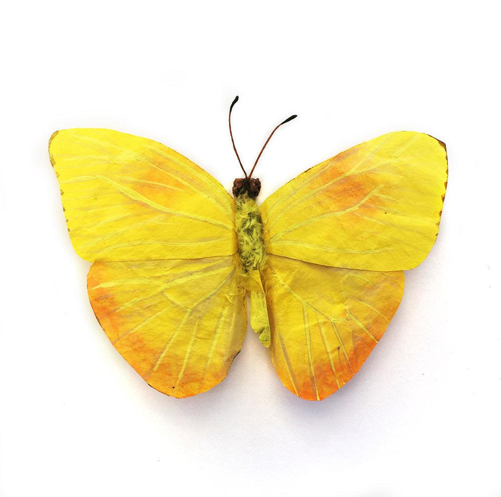 YellowButterfly_web.jpg