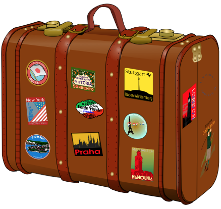 travelluggagecompanion.png