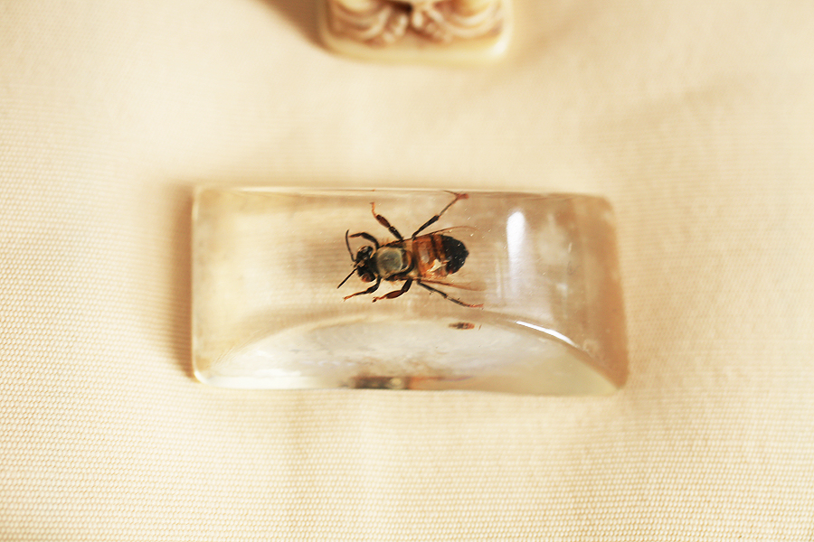 HoneyBee-Detail.jpg