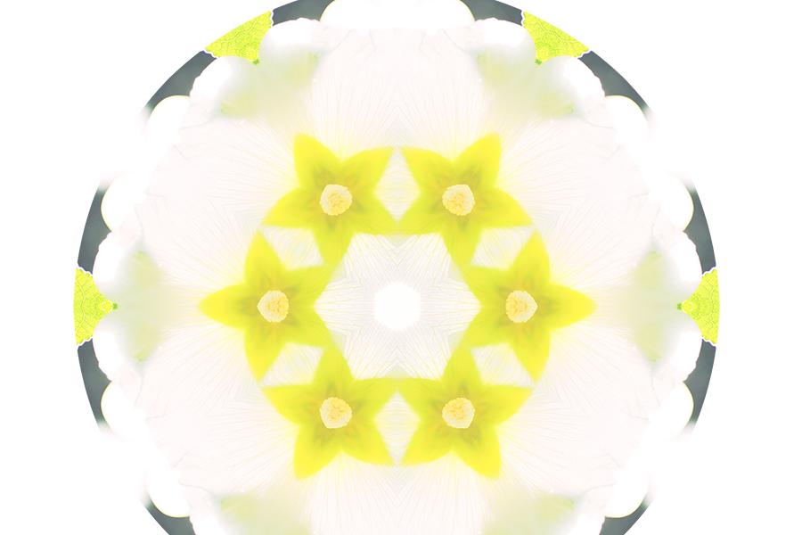 flowercrownMandala-Detail.jpg