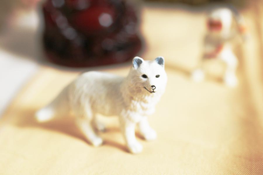 Wolf Detail.jpg
