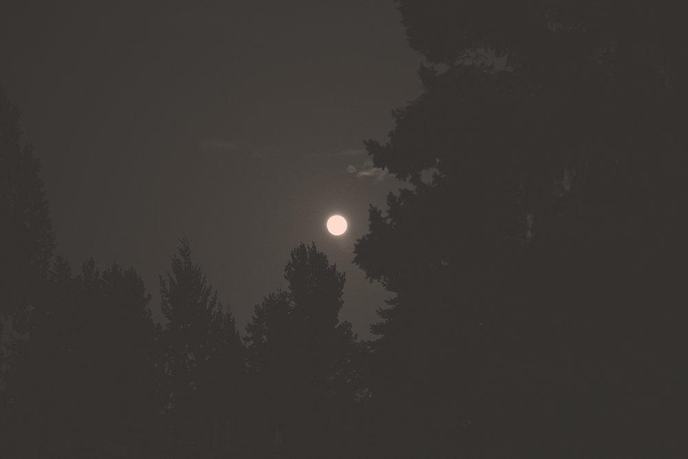 FullSupermoonMoonEclipseinLeo_13118_B&W.jpg