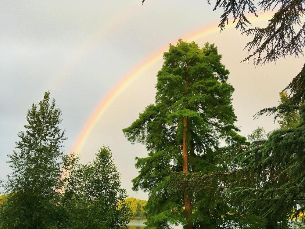 RainbowVigil.jpg