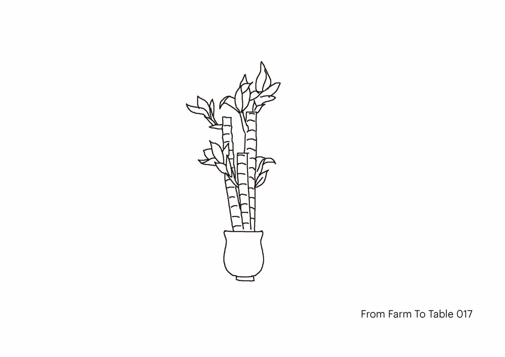 farm to table - Don_s drawing-17web.jpg