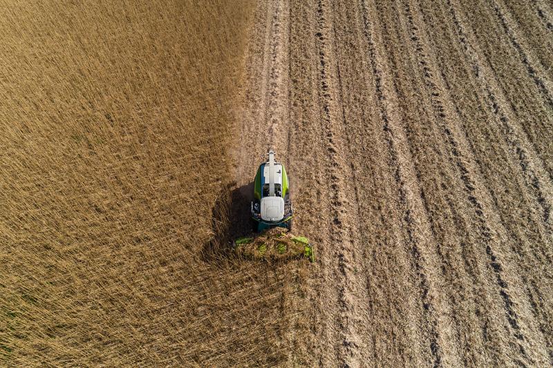1. Miscanthus harvest 1 sml.jpg