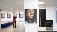 HLN - 60 lokale kunstenaars exposeren 170 werken in Heilig-Hartziekenheid