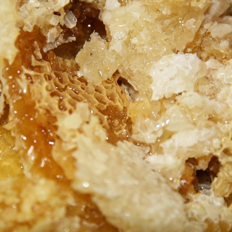 miel et cire opercules