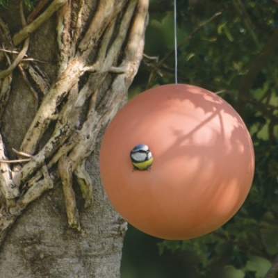 garden-bird-using-birdball-birdhouse-by-green-and-blue-450x450.jpg