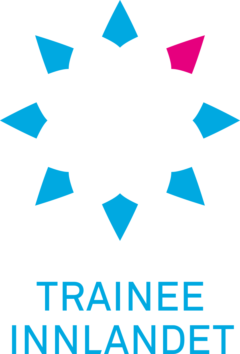 TI_logo_side_lysblå_cmyk - Ingvild Bergersen.png