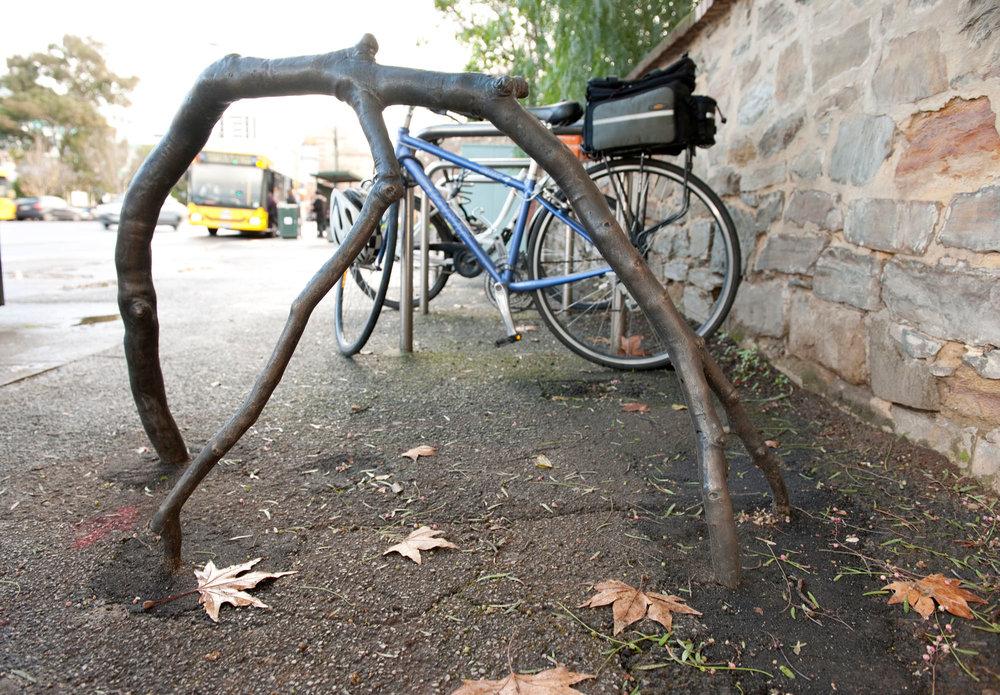 Image:  Branchrack