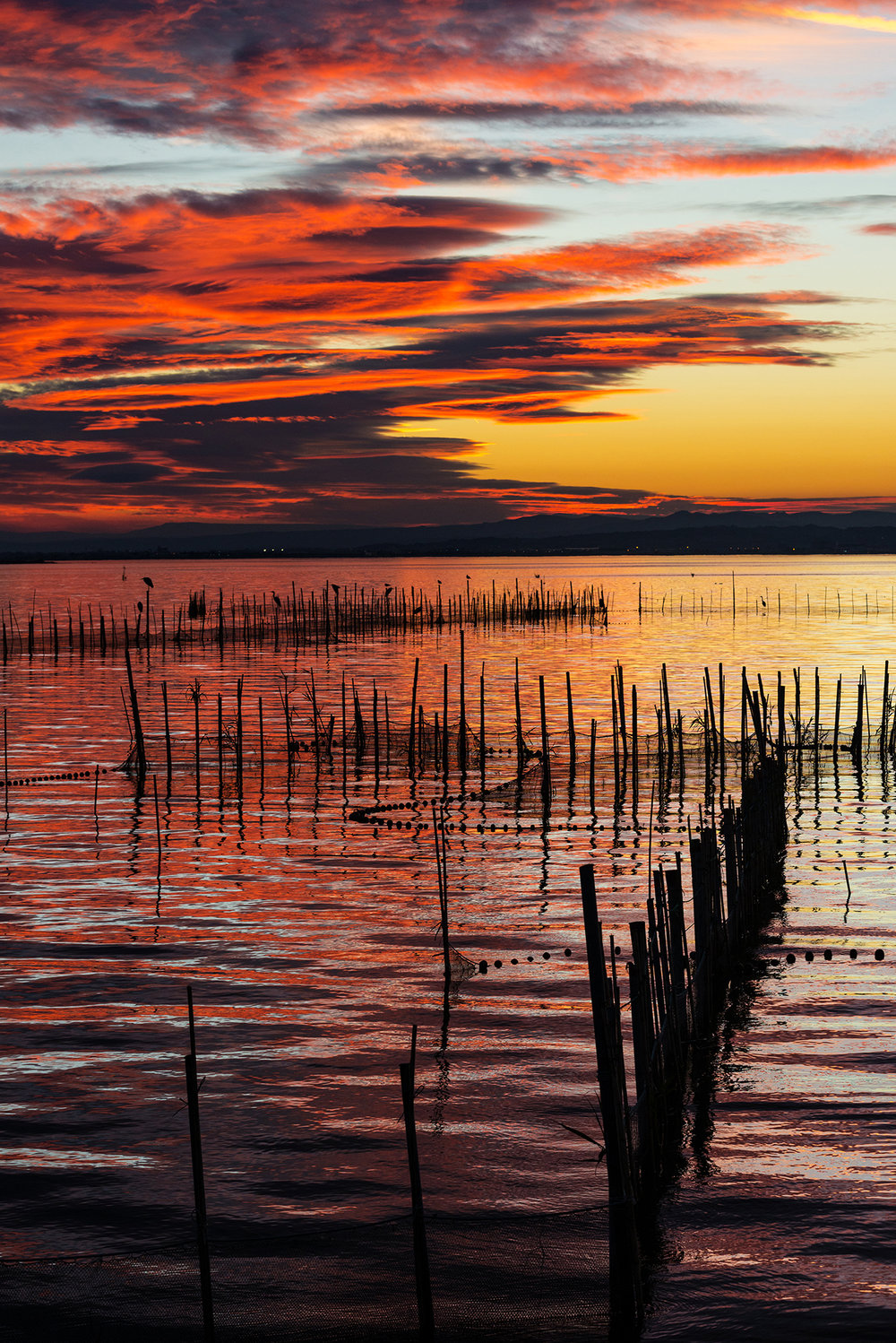Red sunset in the Albufera in Valencia