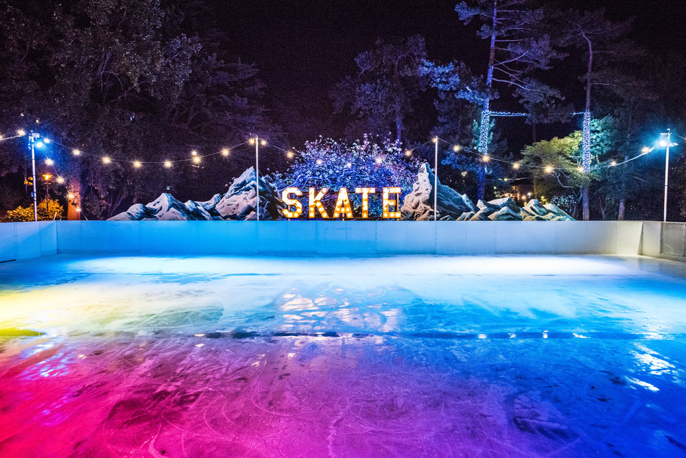 Bournemouth-Ice-Rink-Launch-Night-2016---Full-res---Photos-by-Sirius-Art-(15).jpg