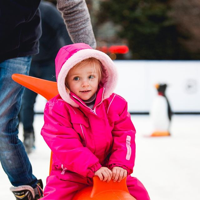 🐧P-p-p-p-p pick up a Penguin or Slide on a Seal and join us on the Ice! 🐧  Our skate aids are ideal for young ones and those less confident skaters!  #westquayshoppingcentre #southampton #westquay #iceskate #ice #icerink #christmas #winter #photography #alpine #alpinebar #steins #hotchocolates #instagood #picoftheday #soton #southamptonbloggers #igdaily