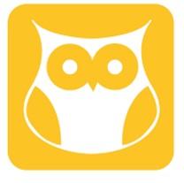 Wise owl.jpg