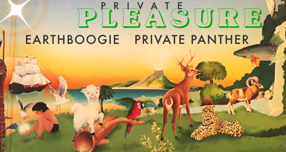 privatepleasure98.jpg
