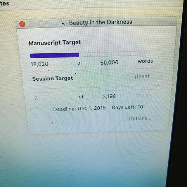 Scrivener is not sugar coating the abandonment of my manuscript for ten days. Okay. Time to make it happen. #nanowrimo #bulletjournal #bulletjournalforwriters #writersnotebook #scrivener