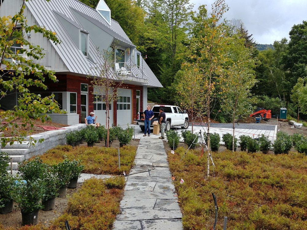 Planting for a landscape project in Warren, Vermont