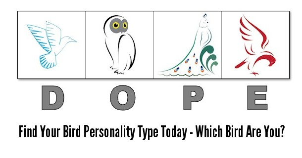 dope-bird-personality-test-banner-1a.jpg