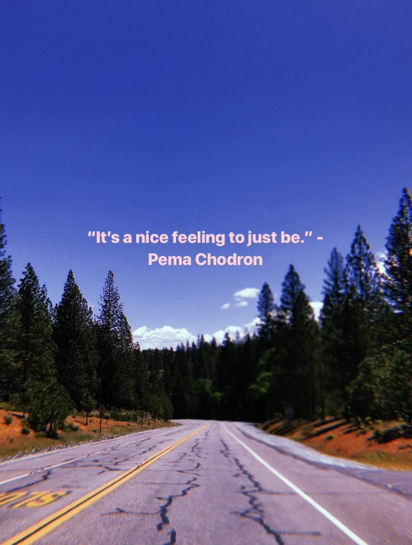 Photographed by Jessica Tuttle; Quote by Pema Chodron