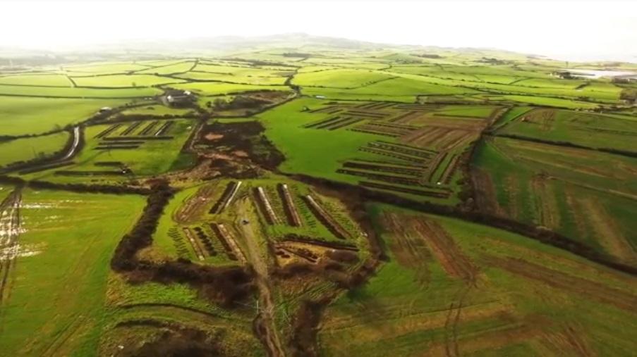 Wylfa Newydd Archaeology.jpg