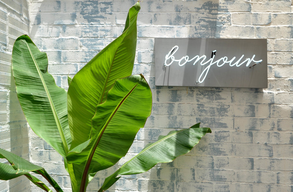Un muro de ladrillo pintado en blanco y azul, un letrero iluminado estilo vintage,y un toque de vegetación le dan un toque juvenil a la parte posterior del café.