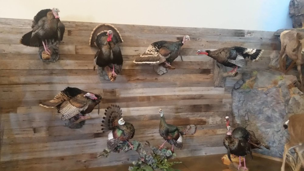 Brown's Wildfowl Taxidermy Redding Sportsman's Expo Hunting and Fishing Show